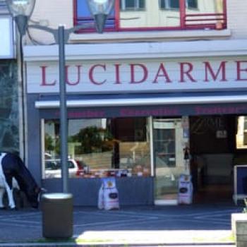 Boucherie Lucidarme