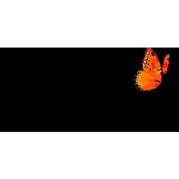 Papillon Paris traiteur